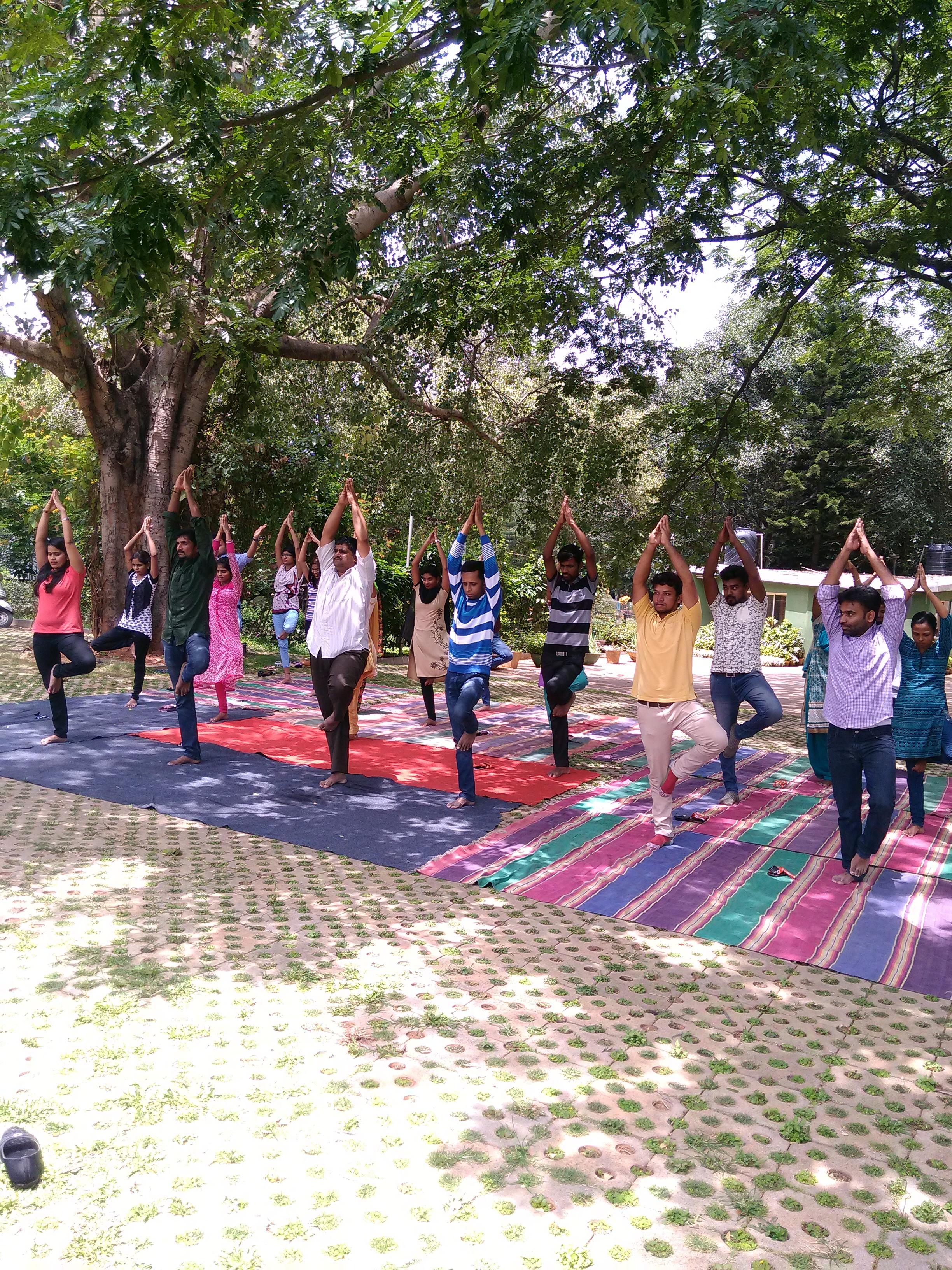 SonaYukti Celebrates World Yoga Day 2017