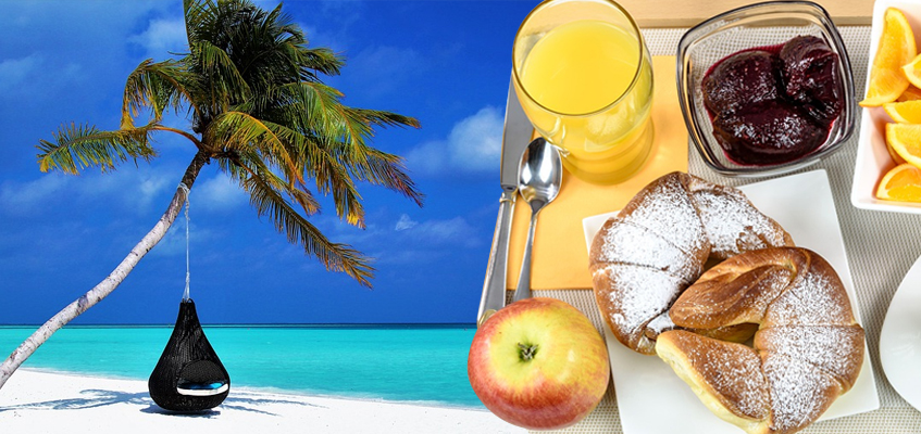 The Tourism and Hospitality Industry